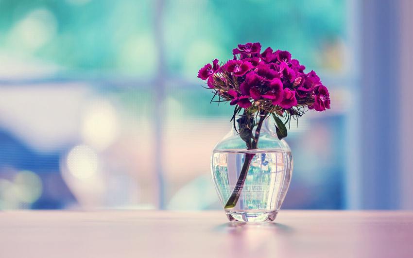 Картинки на рабочий стол цветы в вазе